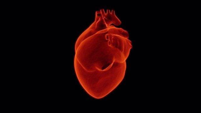 Archivo - corazon