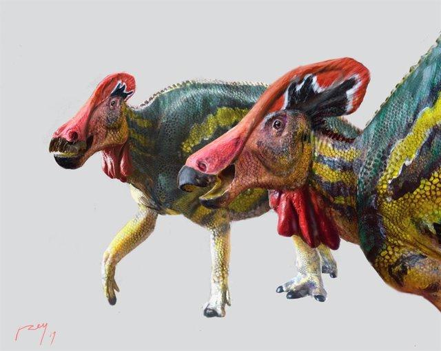 Archivo - Tlatolophus