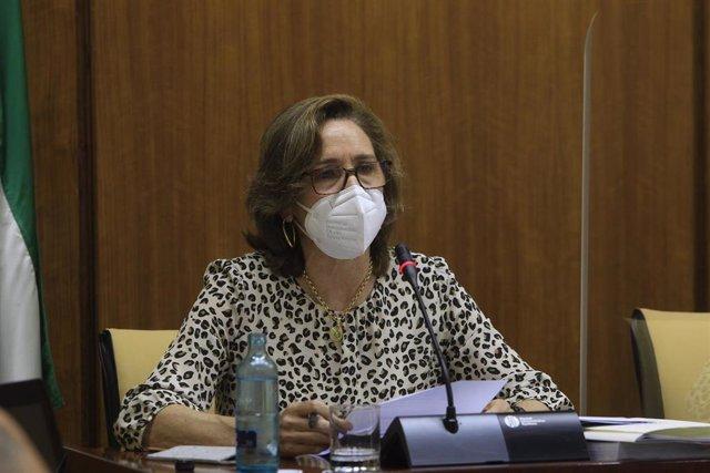La presidenta de la Cámara de Cuentas, Carmen Núñez