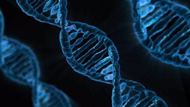 Archivo - Genoma