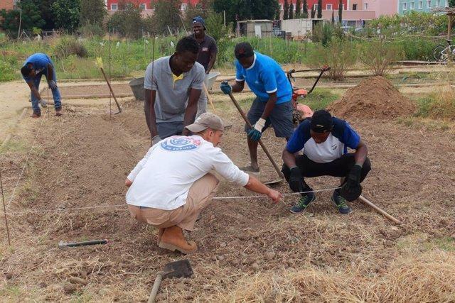 Archivo - La UPO Y La Fundación Mornese se unen para fomentar la formación de jóvenes inmigrantes a través de prácticas
