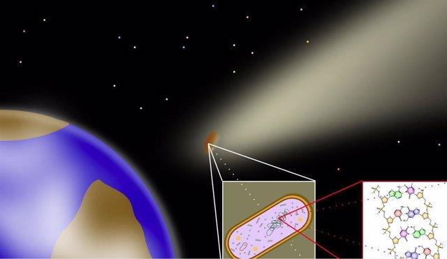 Panspermia: la teoría que plantea cómo la  vida puede expandirse entre planetas