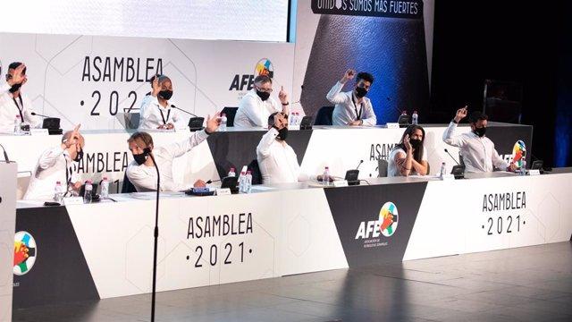 Asamblea General Ordinaria de AFE
