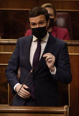 Arxiu - El líder del PP, Pablo Casado, intervé en una sessió de control al Govern.