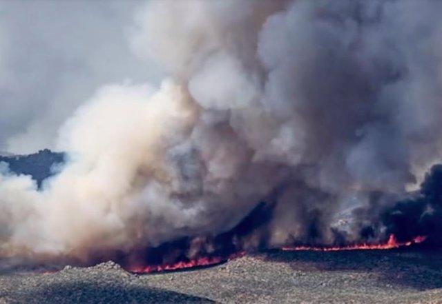 El humo de los incendios forestales provocados por el hombre en la estepa patagónica está atrapado en el hielo antártico.