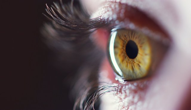 Archivo - Ojo, retina