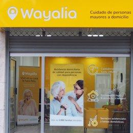 Wayalia crece exponencialmente y se mantiene líder del sector.