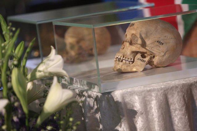 Archivo - Calavera de una persona asesinada durante la época colonial alemana en Namibia