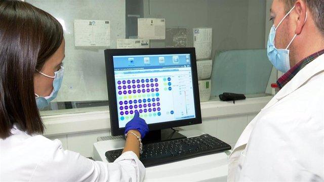 Archivo -  PCR