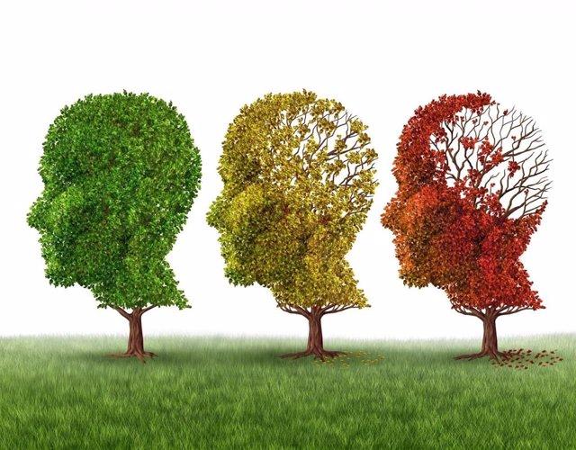 Archivo - Una de cada tres personas será diagnosticada de Alzheimer