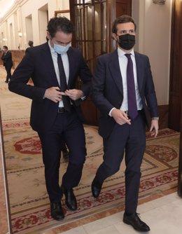 El secretario general del PP, Teodoro García Egea, y el líder del PP, Pablo Casado, en el Congreso de los Diputados.
