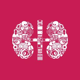 Archivo - Kidneys icon