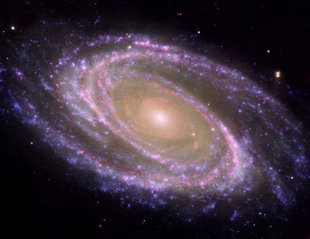 Ejemplo de galaxia espiral cercana, M81, donde se identifica fácilmente el bulbo y el disco.