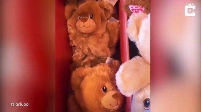 Un joven de 19 años tiene un detalle con su novia regalándole un oso de peluche personalizado