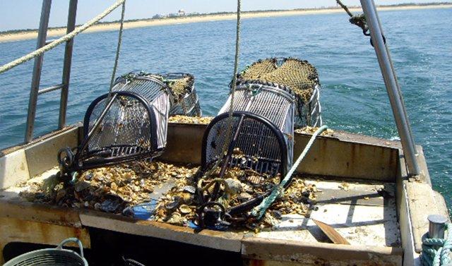 Archivo - Pesca, barcos pesqueros
