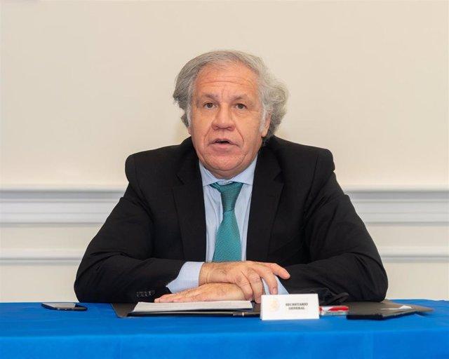 Archivo - Luis Almagro, secretario general de la OEA