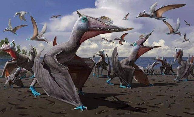Ilustración de la nueva especie de pterosaurio descubierta en China