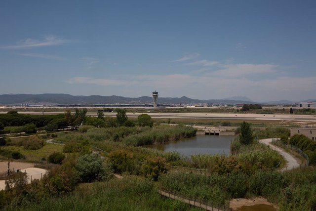 El aeropuerto de de Josep Tarradellas Barcelona-El Prat, cerca del espacio protegido natural de La Ricarda, a 9 de junio de 2021, en El Prat de Llobregat, Barcelona, Cataluña (España).