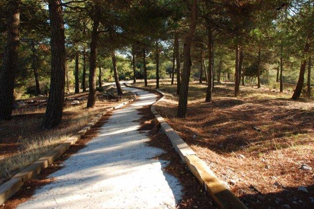 Archivo - Sendero de Narváez del Parque Natural Sierra de Baza (Granada)