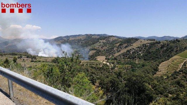 Bombers treballen en un incendi a Gratallops (Tarragona)