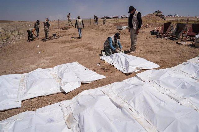Cuerpos de víctimas del grupo yihadista Estado Islámico exhumados de una fosa común en Irak