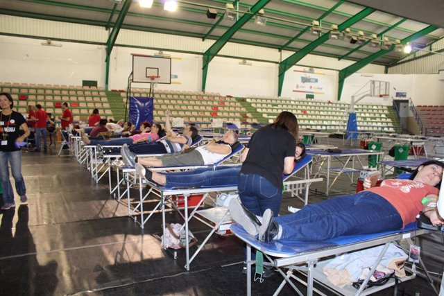 Archivo - Maratón de donantes de sangre en una image de archivo