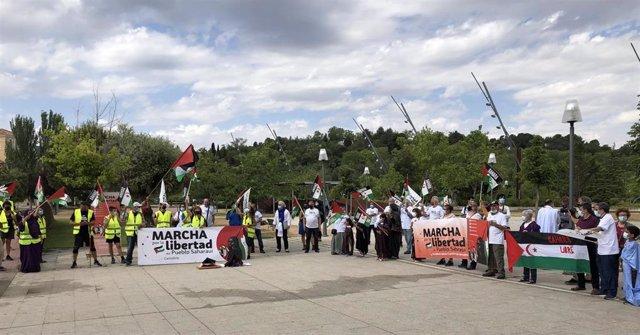 Concentración en apoyo al pueblo saharaui frente a las Cortes de Castilla y León.