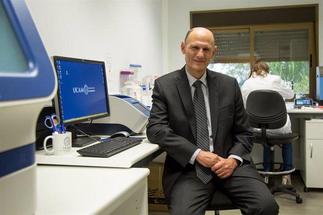Archivo - Un equipo de científicos liderados por Izpisua desarrolla un método que acerca la curación de la diabetes