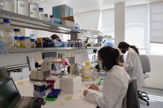 Archivo - Investigadoras de la Universidad de Málaga