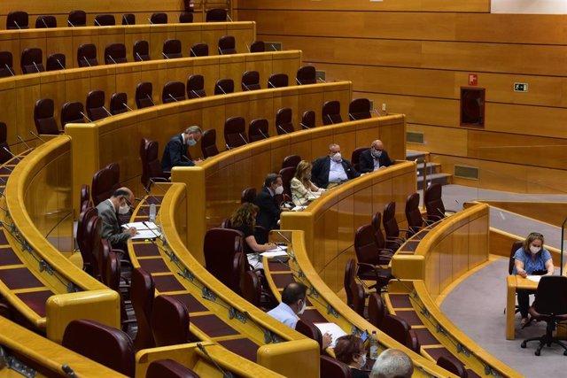 Comisión del Senado de Asuntos Iberoamericanos.