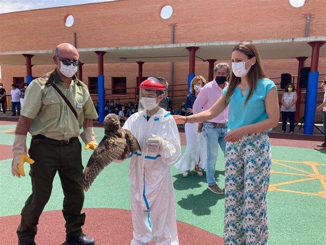 Actividad en el Veracruz