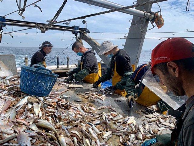 Archivo - Actividad pesquera en barco pesquero