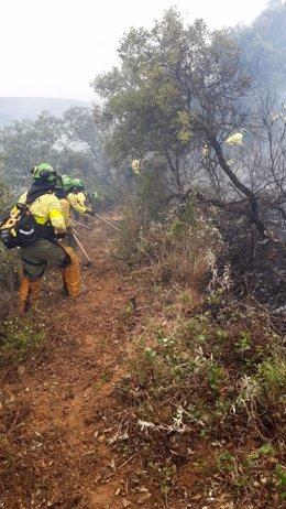 Incendio en El Garrobo