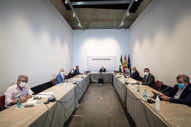 Reunión del comité de expertos Covid-19 de la Junta de Andalucía presidido por el consejero de Salud y Familias, Jesús Aguirre.