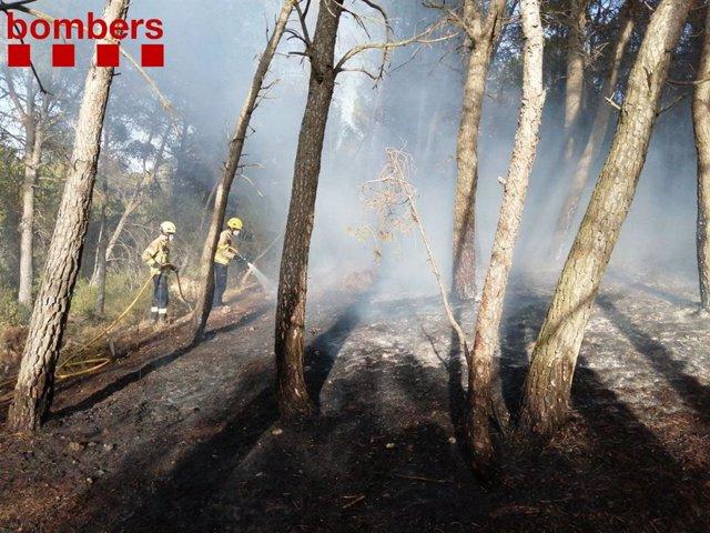 Dos bombers treballen en un incendi forestal a Querol (Tarragona).