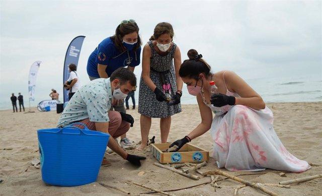Sergi Campillo y Mireia Mollà limpian parte de la playa la Dehesa de El Saler junto al Parador