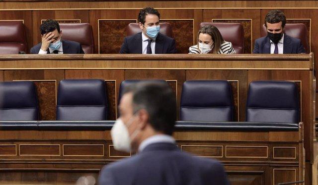 El presidente del Gobierno, Pedro Sánchez, interviene en una sesión de control al Gobierno, con los principales dirigentes del PP de fondo, empezando por su presidente, Pablo Casado (Izqda)