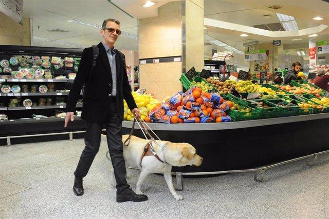 Archivo - Persona ciega junto a su perro guía