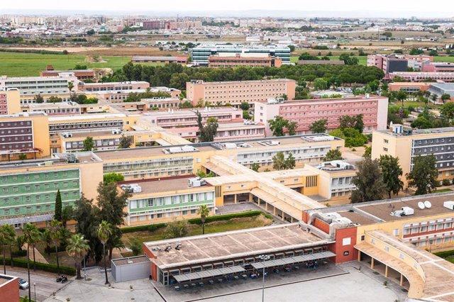 Archivo - Vista área del campus de la UPO (foto de archivo).