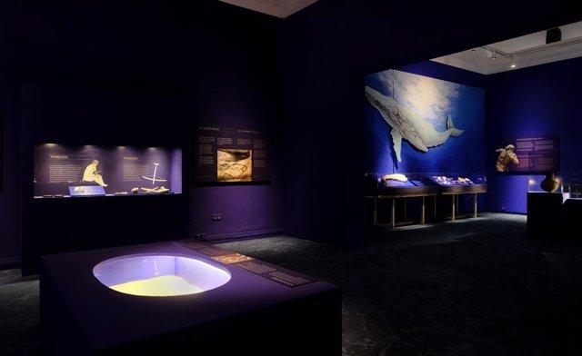 Exposición 'La prehistoria y el mar'