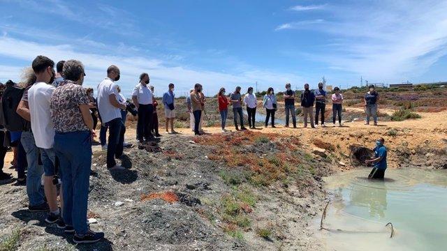 La UICN y la Universidad de Cádiz, recuperan antiguas salinas para impulsar la economía local y proteger la biodiversidad y la cultura local.