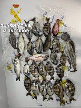 La Guardia Civil levanta acta de denuncia a tres personas por realizar pesca submarina en zona prohibida