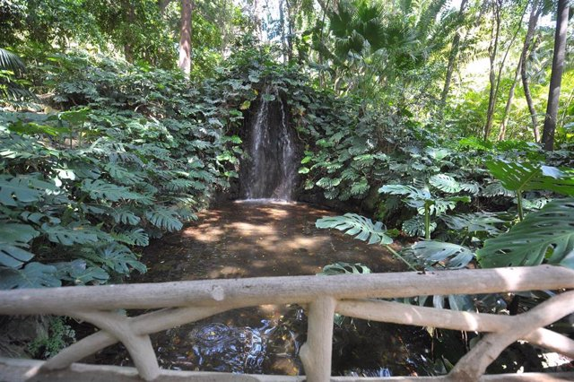Archivo - Jardín Botánico de La Concepción de Málaga