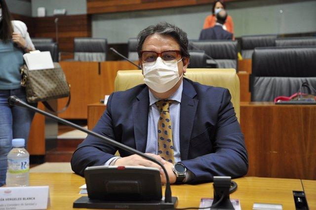 El vicepresidente segundo y consejero de Sanidad y Servicios Sociales de la Junta, José María Vergeles, en la Asamblea en una imagen de archivo