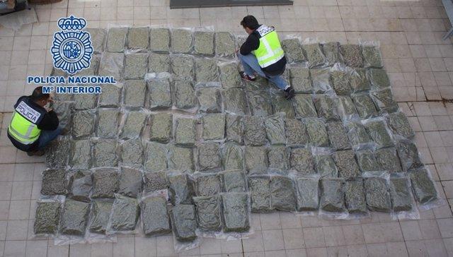 Archivo - Cogollos de marihuana incautados por la Policía en una foto de archivo.