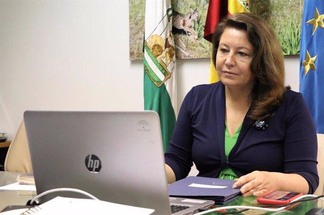 Archivo - La consejera de Agricultura, Ganadería, Pesca y Desarrollo Sostenible, Carmen Crespo, en una imagen de archivo de su participación en la Conferencia Sectorial de Pesca.