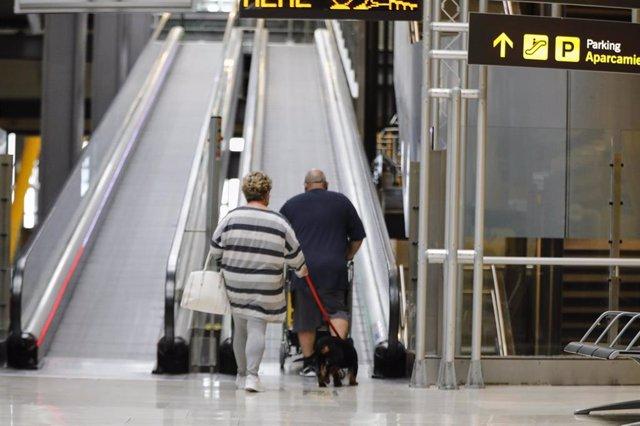Archivo - Una pareja con un perro se dispone a subir unas escaleras mecánicas en el Aeropuerto Madrid-Barajas.
