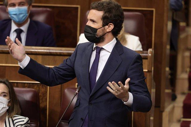 El líder del PP, Pablo Casado, al Congrés dels Diputats.