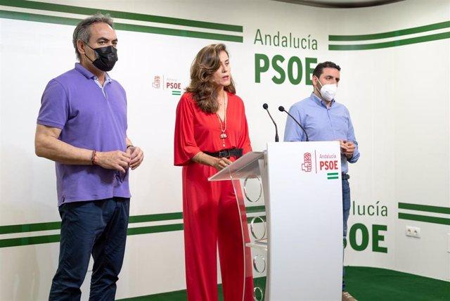 Los diputados provinciales del PSOE Marcelo López, Carmen Aguilar y Juan Manuel Ruiz