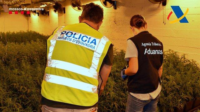 Operació dels Mossos d'Esquadra i agents de la Unitat de Vigilància Duanera de Catalunya i Andalusia.